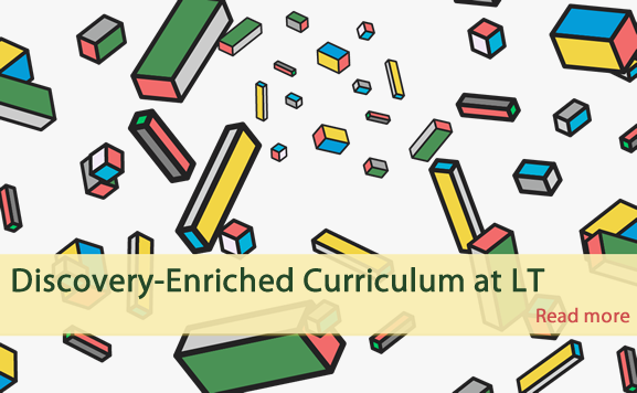 Discovery-Enriched Curriculum at LT